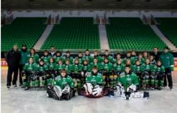 U-12 2012 skupinska