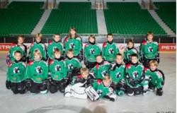 U-8 2012 skupinska