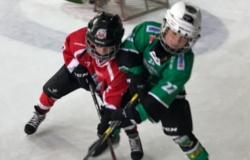 Zmajčki/Hokej šola Turnir Bled 17.9.2017 Ekipa 8-A