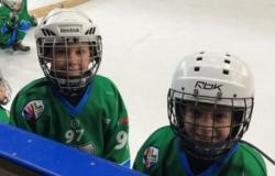Zmajčki, Hokej šola Turnir Bled 2.12.2017 ekipa U-8