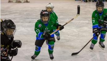 Hokej šola Turnir Zmajček 4.2.2018 Ekipa U-6