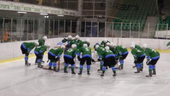 Konec hokejske sezone