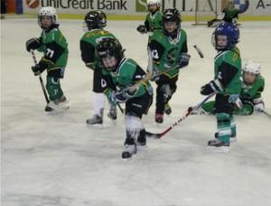 hokejsola